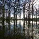 River Severn Flood